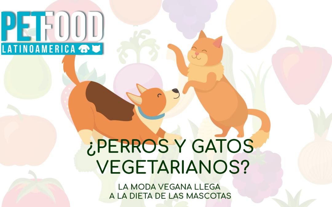 ¿Perros y gatos vegetarianos? La moda vegana llega a la dieta de las mascotas