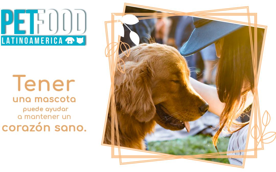 Las mascotas, especialmente los perros, reducen el riesgo de padecer un ataque cardíaco.