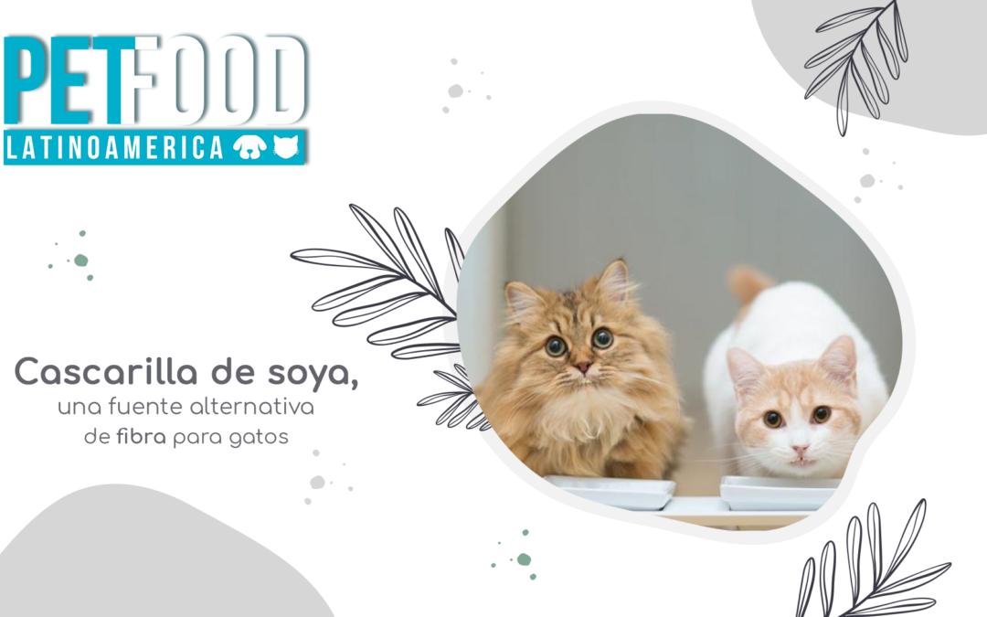 Cascarilla de soya, una fuente alternativa de fibra para gatos.