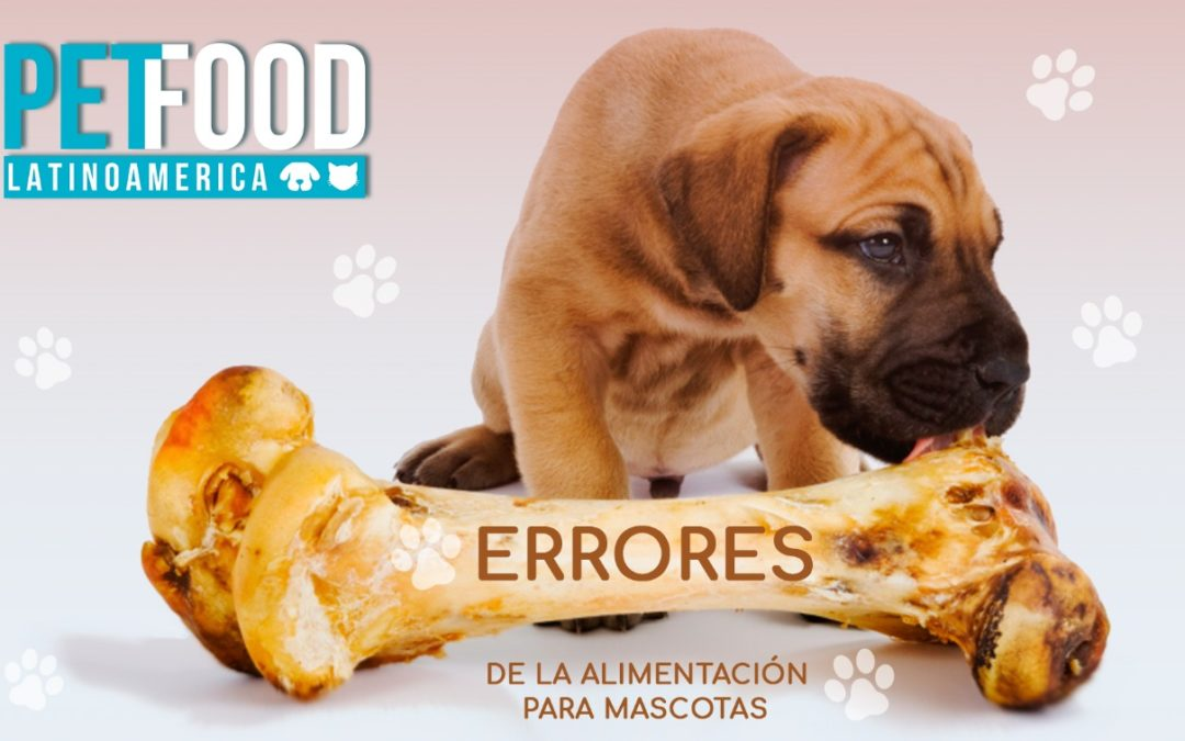 Errores de la alimentación para mascotas.