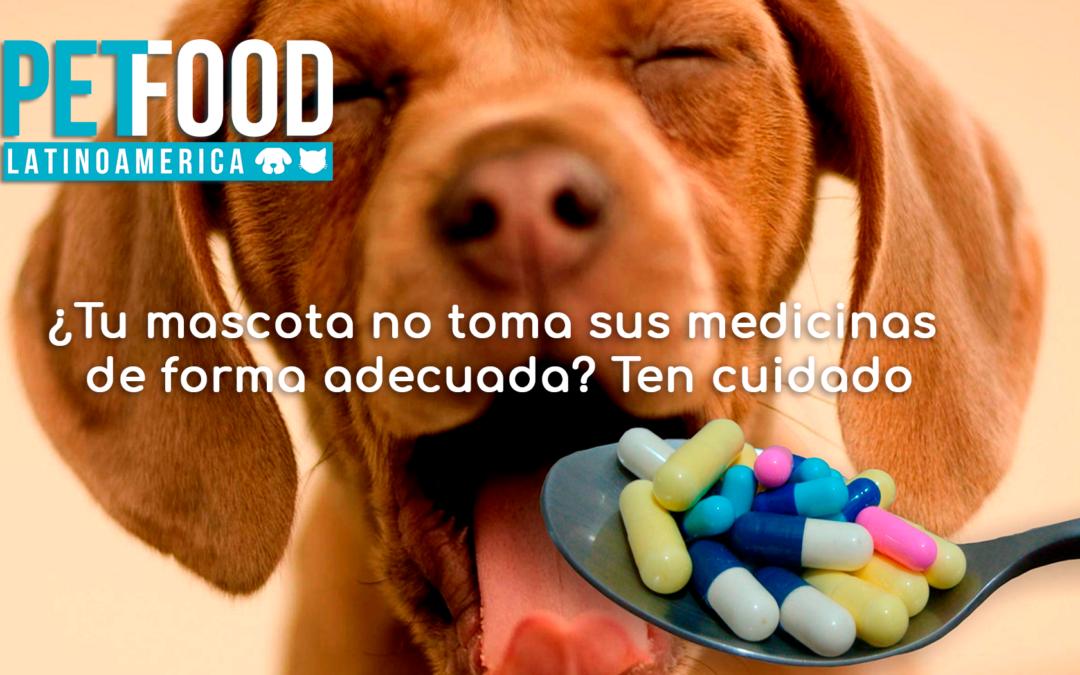 Las golosinas de mascotas no deben superar el 10% de las calorías diarias.