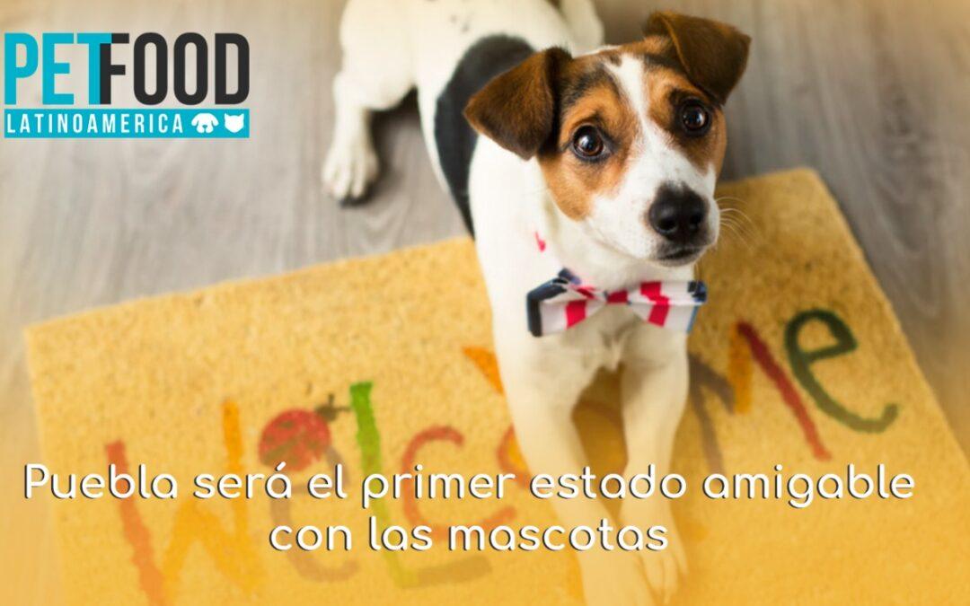 Puebla será el primer estado amigable con las mascotas