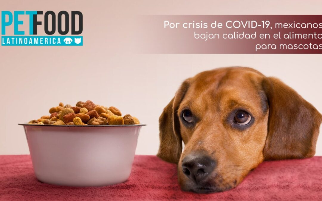 Mexicanos bajaron calidad de alimento para mascotas ante crisis por COVID-19