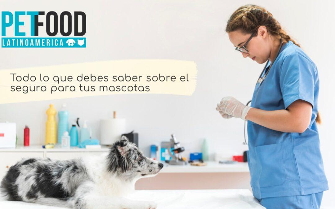 Todo lo que debes saber sobre el seguro para tus mascotas, las consentidas de la casa