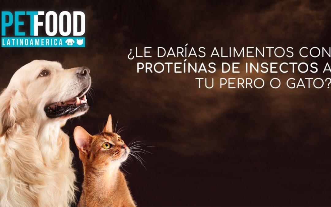 ¿Le darías alimentos con proteínas de insectos a tu perro o gato?