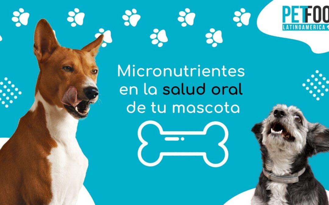 Micronutrientes en la salud oral de tu mascota